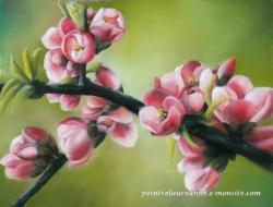arbre fleuri pastel sec