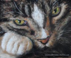 chat aux yeux verts au pastel sec Laure-Anne