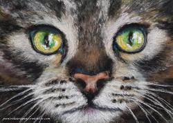 Chat vert laure-anne