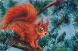 Ecureuil au pastel sec