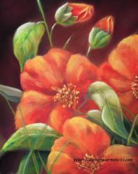 fleurs-oranges-1.jpg