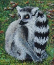 lemurien pastel sec