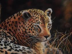 leopard au pastel sec animaux sauvages félins